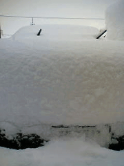 snow3.png